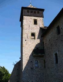 356 Věž hradu Litice