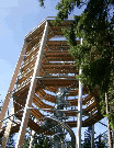 400 Stezka korunami stromů Lipno
